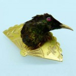 Humming Bird Taxidermied Brooch. Click for more information...